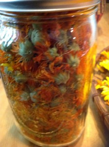 Dried Calendula flowers ready to use as needed!